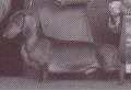 Jonlin Sir Boyd